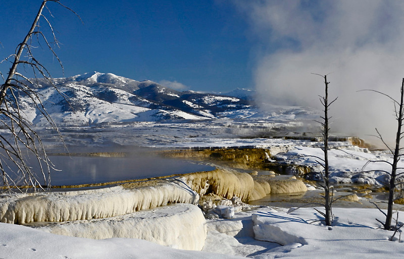 """ Thermal Snow ""   ____ 9775Lh<br /> <br /> Travertine terraces are covered with snow and mountaintops reflected in the steaming pools at Mammoth Hot Springs.   <br /> This is a rare image due to ever changing character of these terraces and pools.  Thermal pools will seemingly 'dry up' ... then reappear elsewhere. In this area groundwater continually emerges at 163ºF (73°C).  Recent studies indicate travertine growth was approximately 1 to 2 feet  (0.3 - 0.6 meters) in a 10-month period.<br /> <br /> <br /> ."
