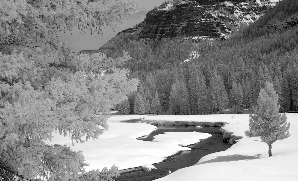 """ Infrared Winter  ""   ____ 3225Lh<br /> <br /> This unique image is fused directly onto a specially treated, rigid piece of Aluminum.<br /> More archival and lighter than a framed paper print, it arrives ready to hang.<br /> The Float-Mounted MetalPrint™ needs no frame and<br /> will appear to float 3/4"" from your wall.<br /> <br /> Archival paper prints are also available<br /> ------- Contact us for more information -------<br /> moreinfo@RobertHowellPhotography.com"