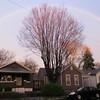 04-11-16 Dayton 03 rainbow
