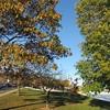 11-10-16 Dayton 53 Friendship Park
