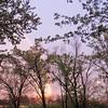 04-11-16 Dayton 06 rainbow