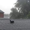 08-28-16 Dayton 05 rain, hail