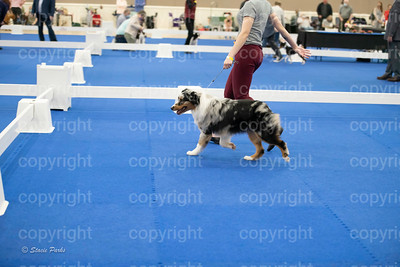pups2 (210 of 783)