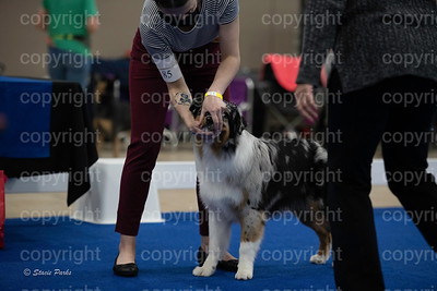 pups2 (206 of 783)
