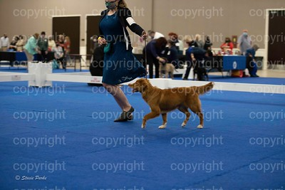 pups (319 of 534)