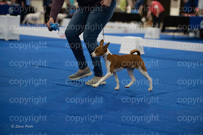 pups2 (156 of 783)