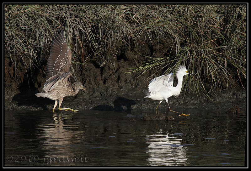 """Heron: """"And don't come back!"""""""