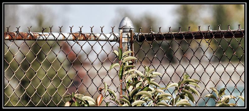 Fence near Building 124