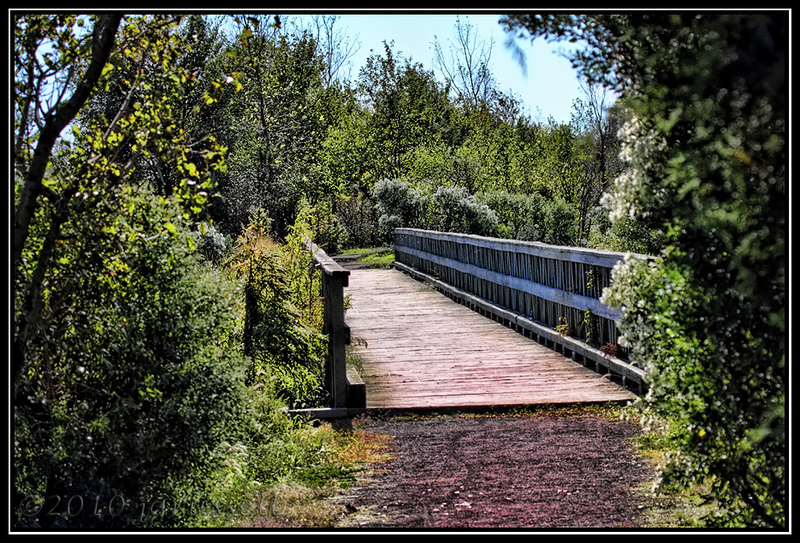 Path and bridge<br /> Mill Creek Marsh