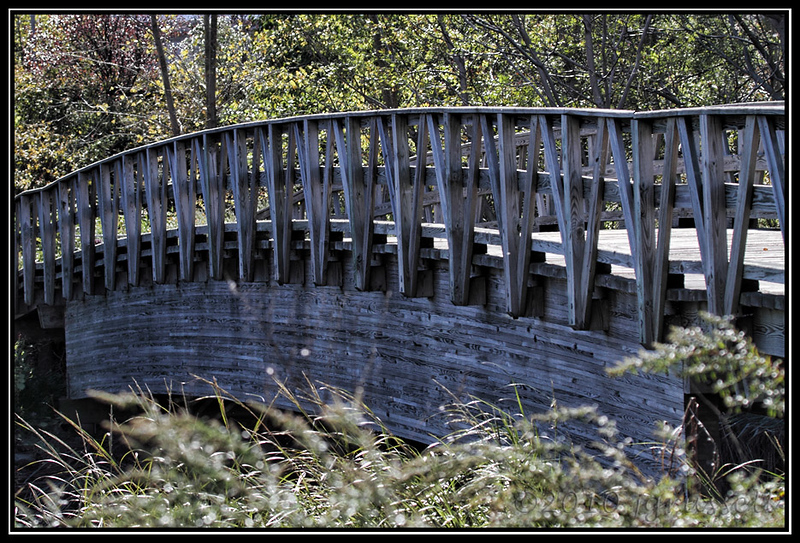 The bridge<br /> Mill Creek Marsh