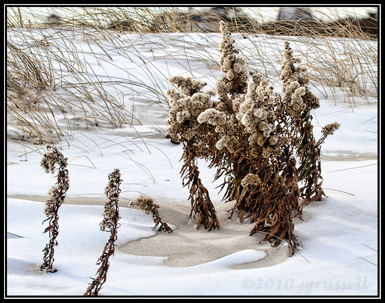 Winter beach scene I