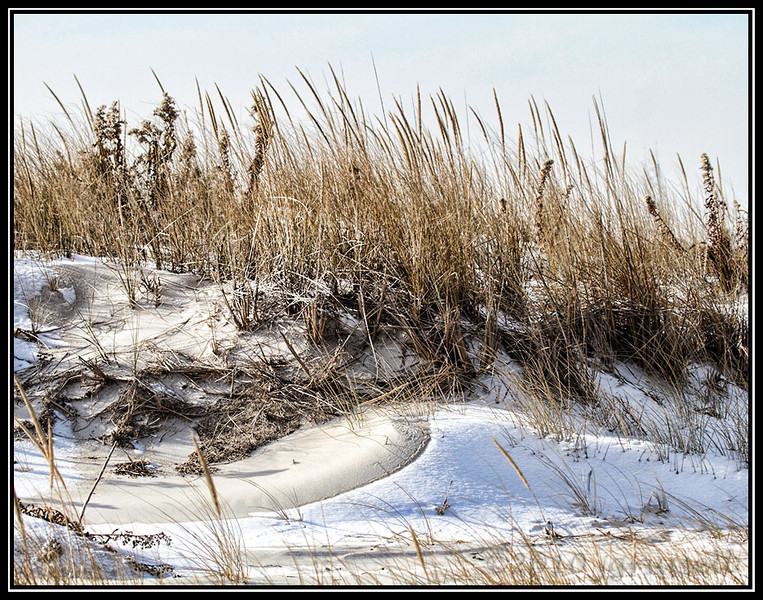 Winter beach scene II