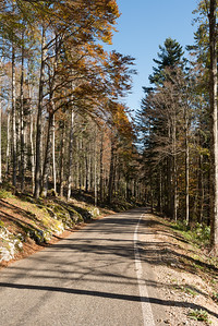 Road to Chasseral