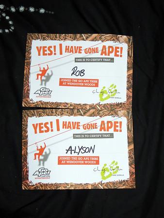 Go Ape Wendover Woods