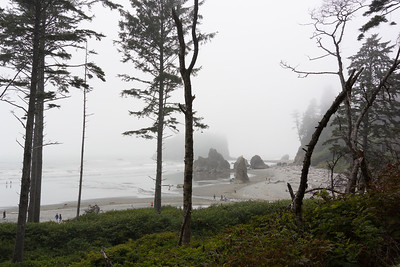 Ruby Beach surprise