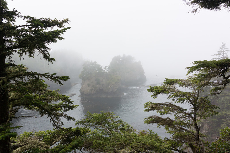 Cape Flattery viewpoint #1