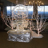 Caridian Ice Sculpture at the Hyatt in Denver Colorado. Double block sculpture sitting on single block Ice Table.