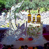 Dolphin Ice Luge with coil hose frozen in ice complimented with a bottle holder with fish and seaweed frozen in the ice