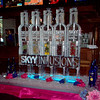 Skyy Infusions 5 luge line ice luge with fruit packs