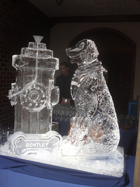 Custom Bentley (dog) and fire hydrant Ice sculpture Luge and an ice bone for Bentley. Yes! this is fun! Custom ice sculptures are always available.