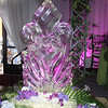 Fluer de Lis Ice Sculpture...can also be made into a luge