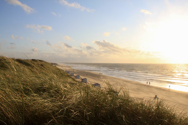 Duinen in Domburg