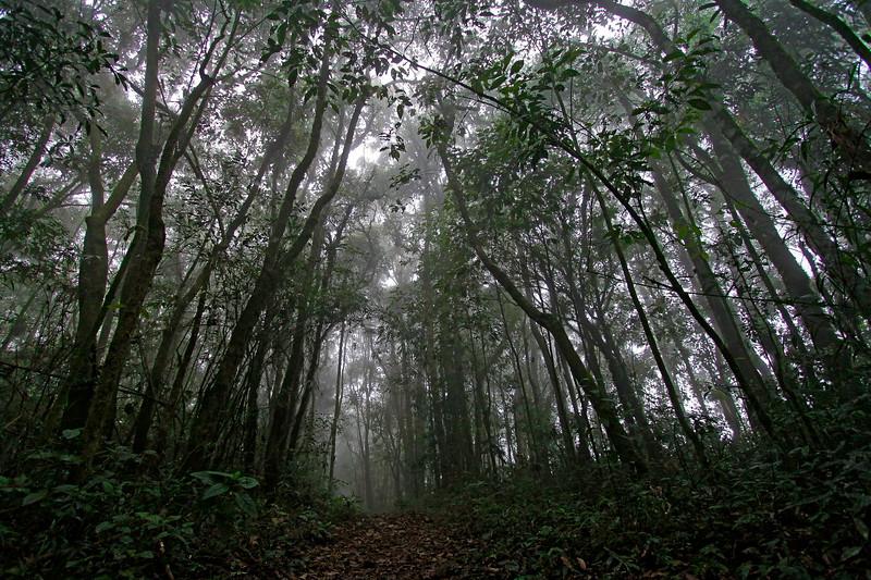 Altos da Serra do Lopo