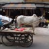 backstreets of Delhi
