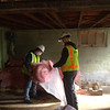 Beau and Amy bag insulation batts for reuse