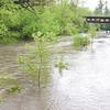 dc.0515.flooding09
