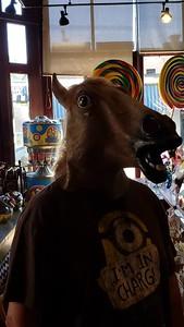 Mr Horse Video