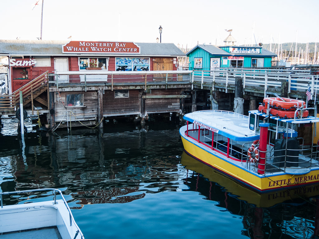 Tours from old fisherman's wharf