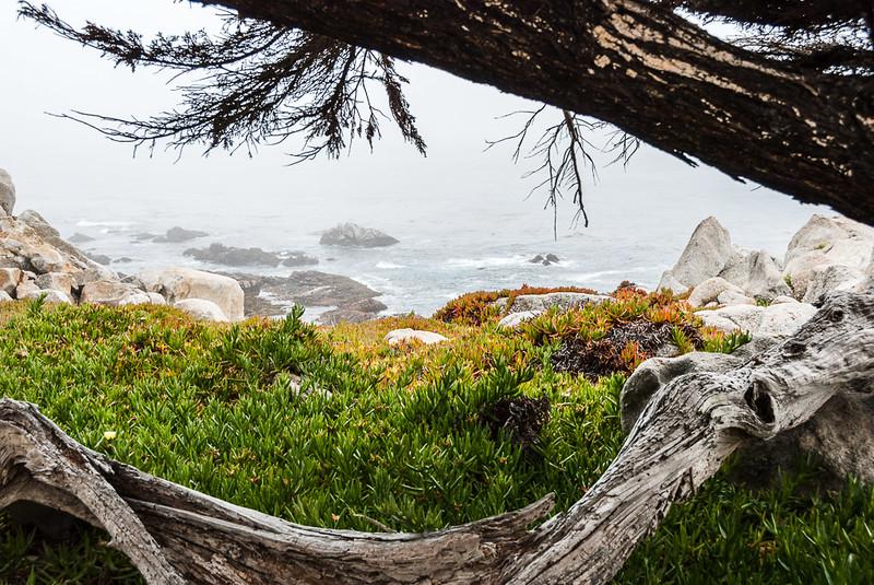 Pebble beach sea view