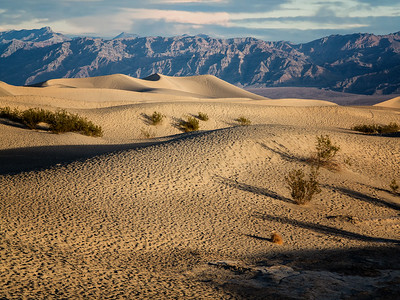 Kemmerer___Mesquite Flats Sand Dunes in Death Valley