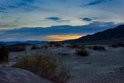 Richards___Mesquite Flats in Early Morning