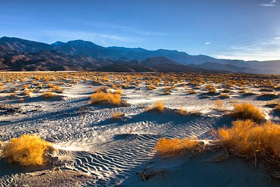 Richards___The Morning Light Hits Mesquite Flats Death Valley