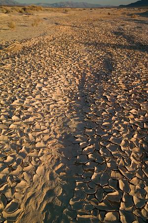 Dune lake sunset