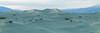 SDIM0332 Panorama