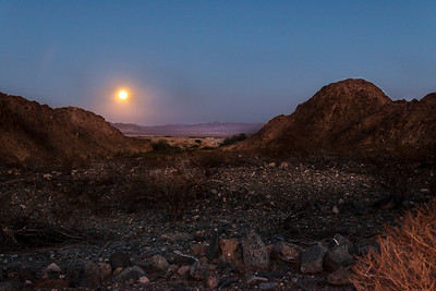 Hunter's Moon Over Desert