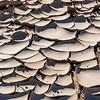 Mud Plates
