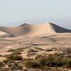 softer dunes