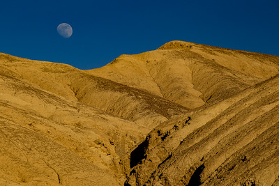 Rising Moon In Mustard Canyon