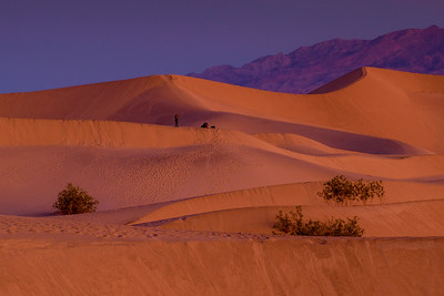 Photographer On Mesquite Flats Sand Dune