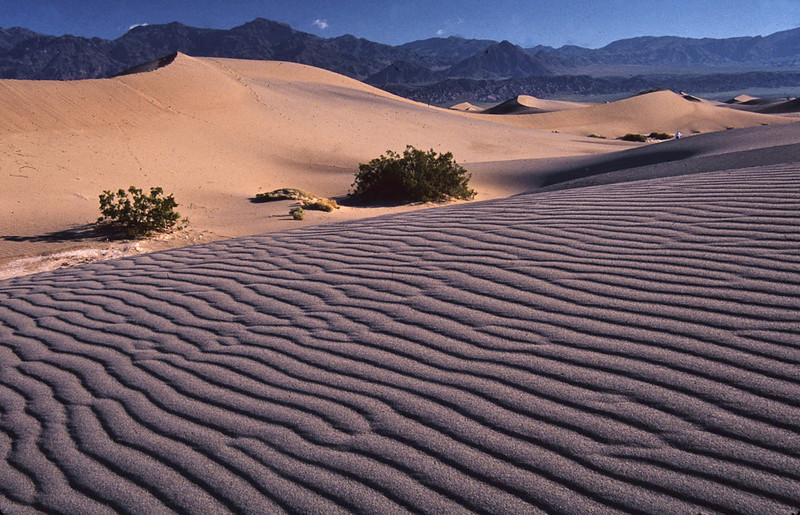 Dunes and Ripples - Death Valley National Park, California - John Hewitt - March 2005