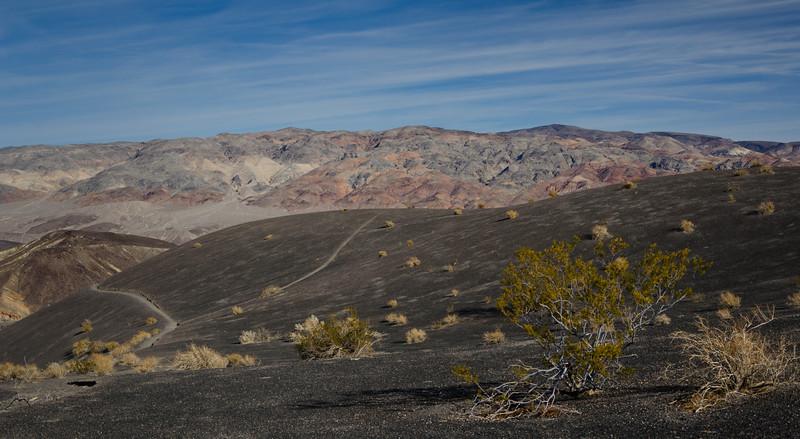 Martian Landscape
