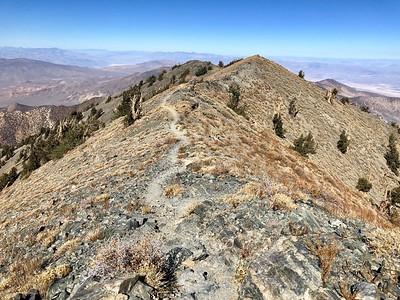 Telescope Peak Trail.  Death Valley National Park