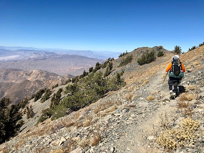 Telescope Peak Trail.  Death Valley National Park