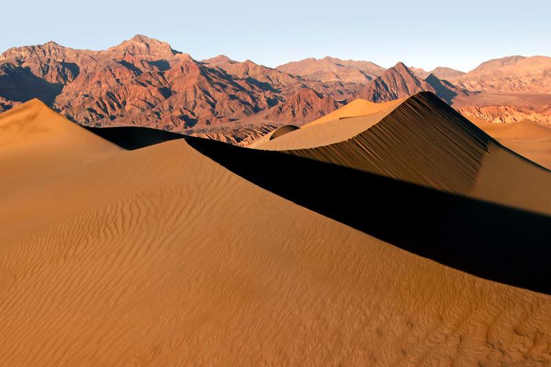 Mesquite Dunes Landscape