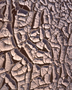 Dried Mud, Death Valley,