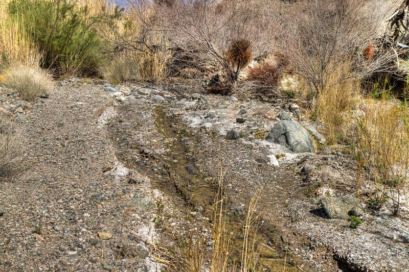 130 Sheep Creek